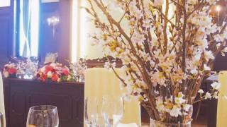桜 春 結婚式 会場